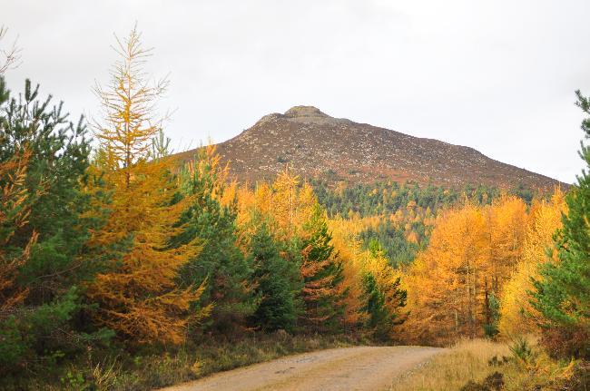 Bennachie in Aberdeenshire, Scotland